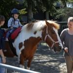 Battesimo a Cavallo